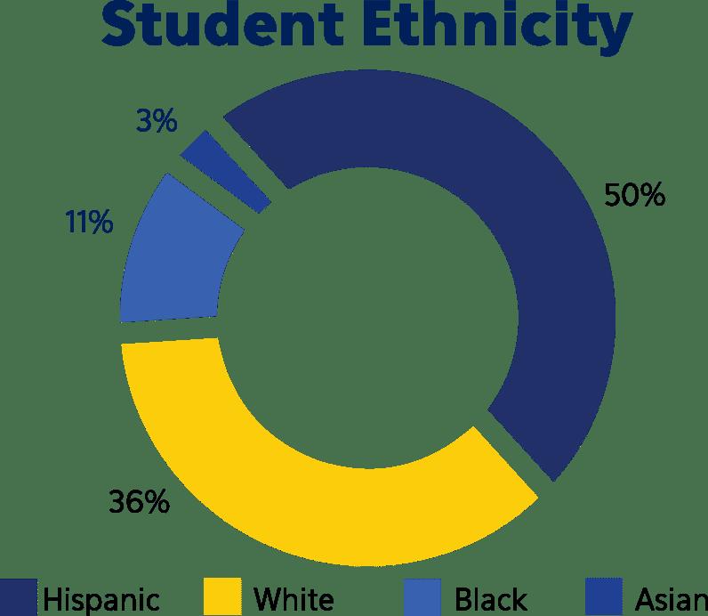 Blackstone Valley Prep Student Ethnicity